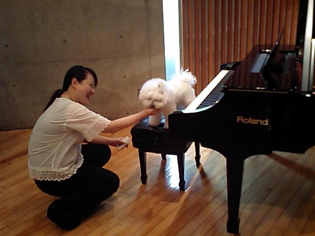 http://www.musicasa.co.jp/blanc_blog/110617.JPG