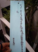 100706tanzaku.JPG